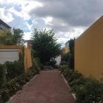 2020-07-16_Bodendenkmal_020