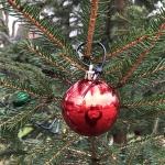 2020-11-27_Weihnachtsbaum_05