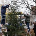 2020-11-27_Weihnachtsbaum_08