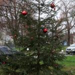 2020-11-27_Weihnachtsbaum_09