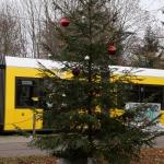 2020-11-27_Weihnachtsbaum_10